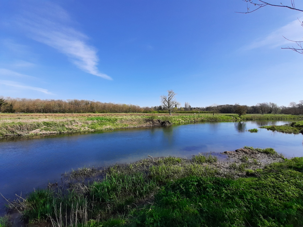 Grantchester Meadows: one of UK's best places for 'wildswimming'